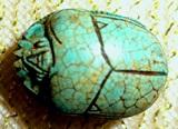 scarab small