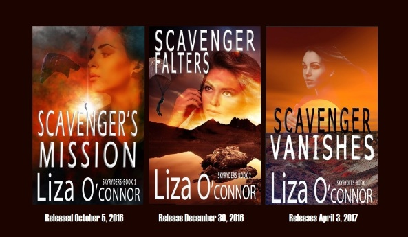 scavenger-skyryder-series-banner