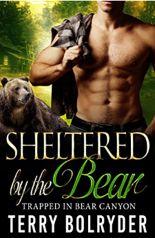 sheltered-by-the-bear